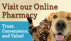 Visit McEwen Animal Clinic's online pharmacy!